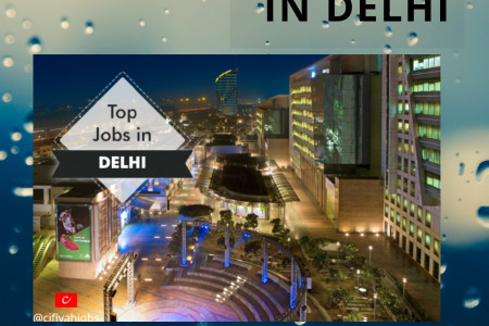 WHAT ARE THE JOB OPPORTUNITIES AVAILABLE IN DELHI? Infographic
