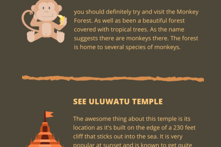 What Are The Must-Dos In Bali? Infographic