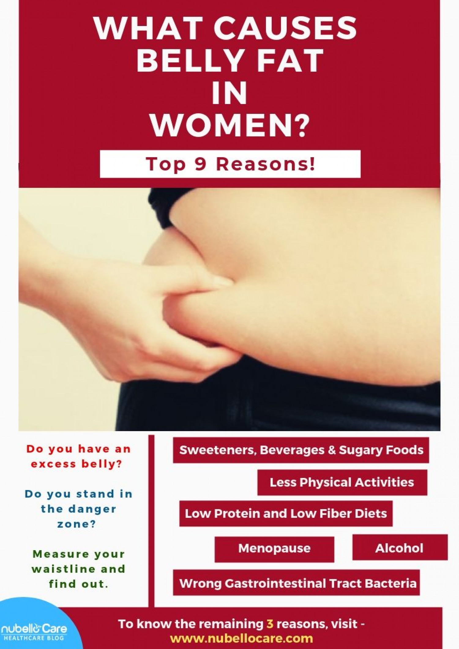 What Causes Belly Fat in Women? Infographic