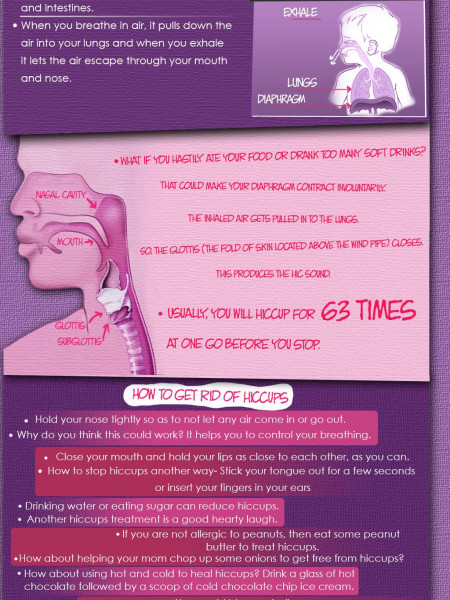 What causes Hiccups? Infographic