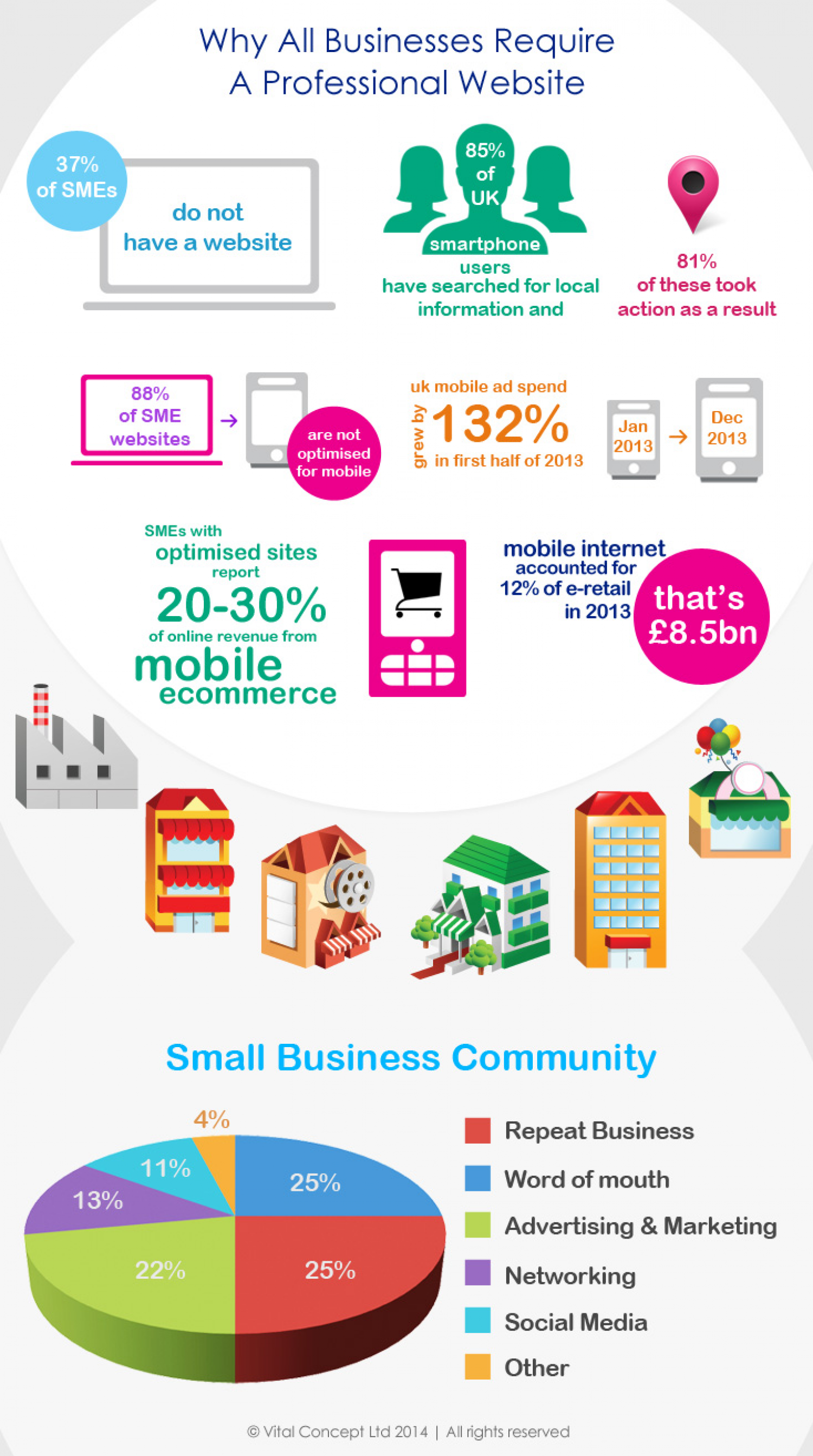Why All Businesses Require A Professional Website Infographic