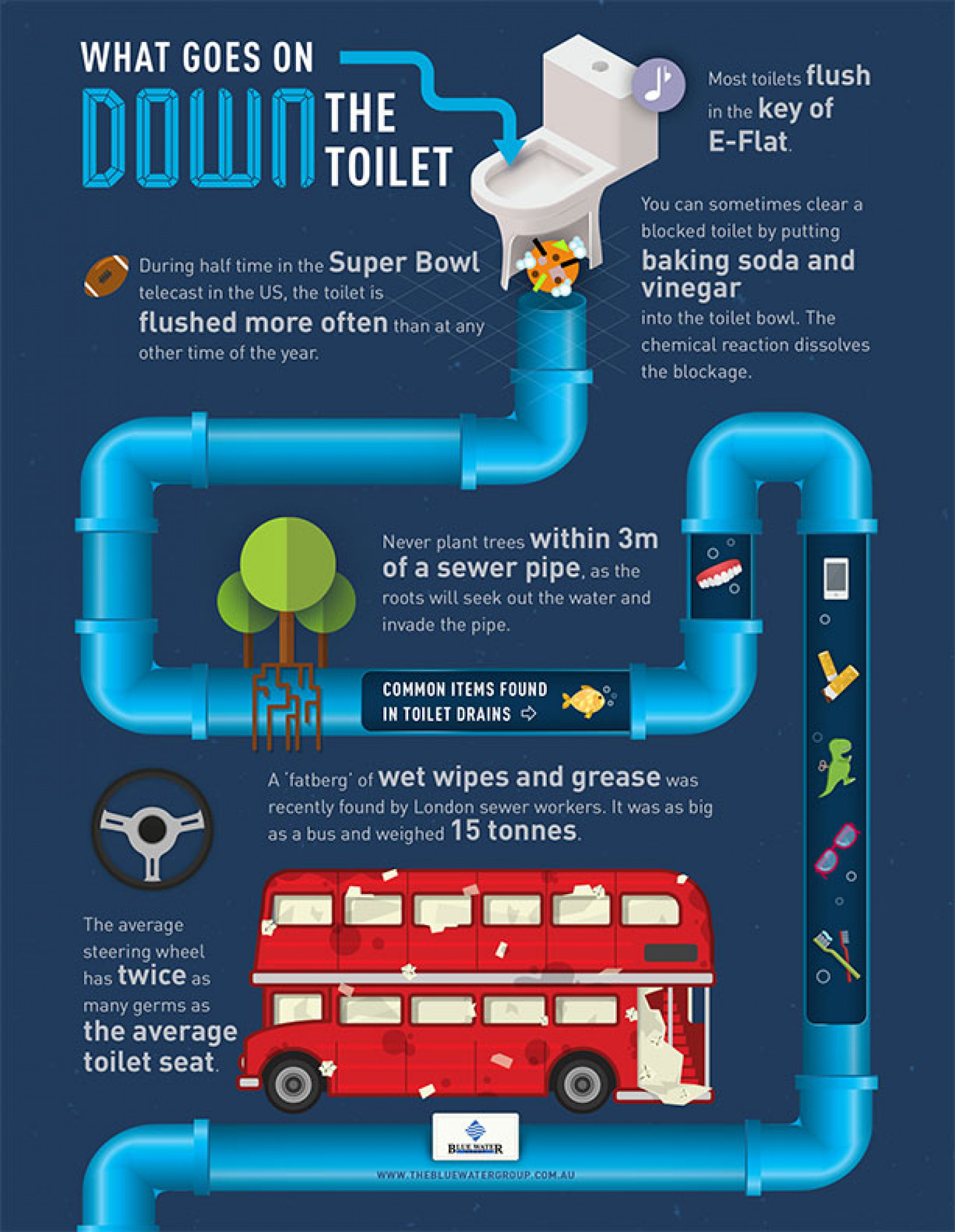 What Goes on Down the Toilet Infographic