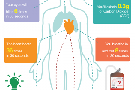 What Happens In Your Body In 30 Seconds? Infographic