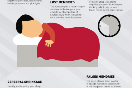 What Happens When Your Brain Doesn't Sleep Infographic Infographic
