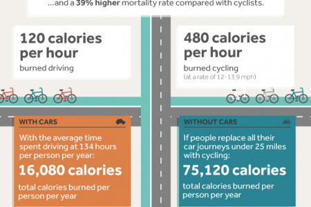 What if Everyone Swapped Their Cars for Bicycles? Infographic