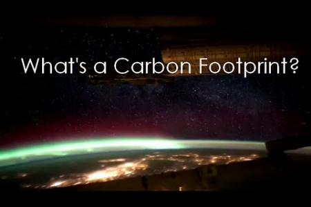 What is a Carbon Footprint Infographic
