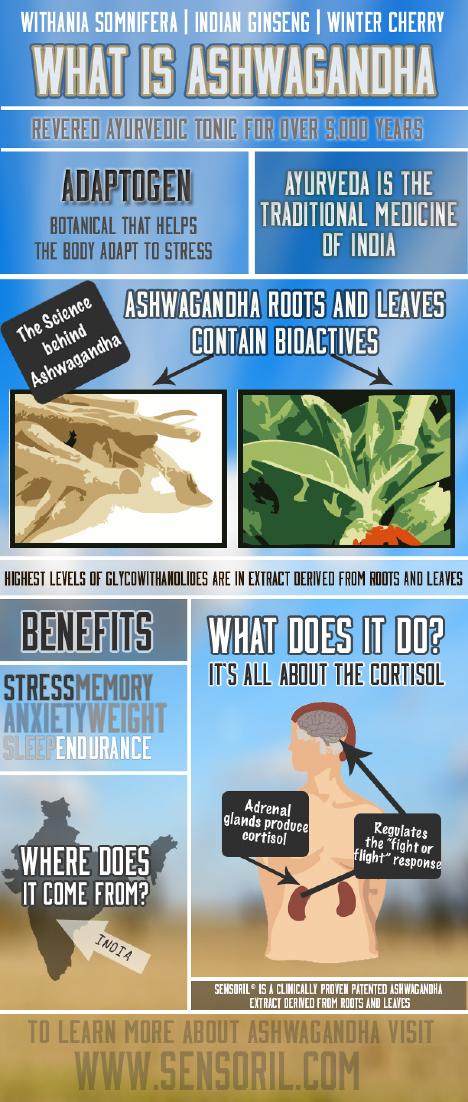 What is Ashwagandha? Infographic