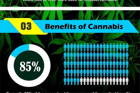 What is Cannabis used for? Infographic