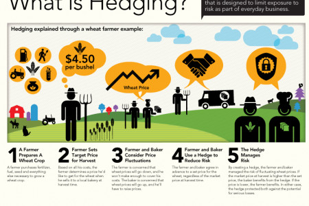 What is Hedging? Infographic