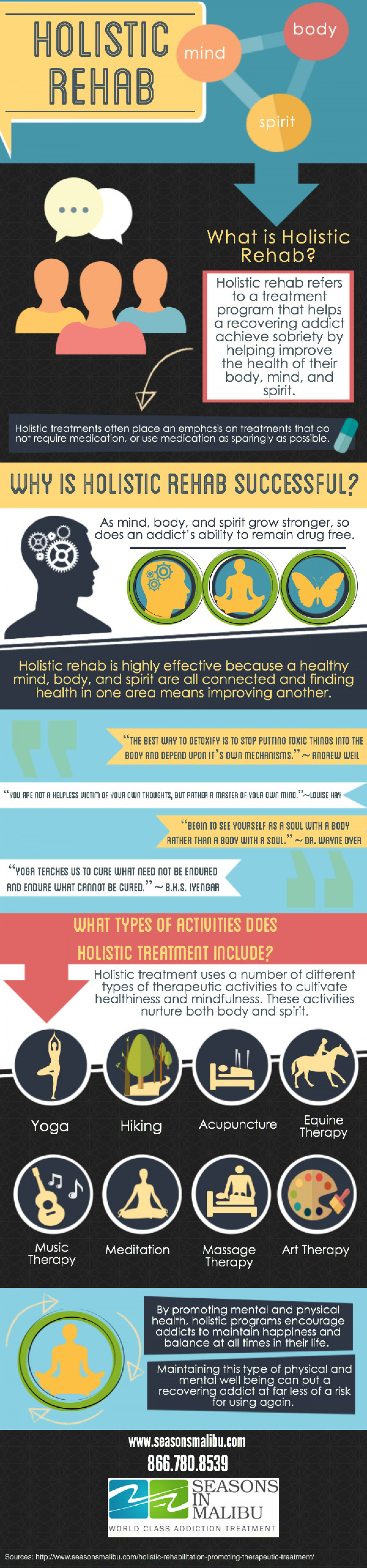 What is Holistic Rehab? Infographic