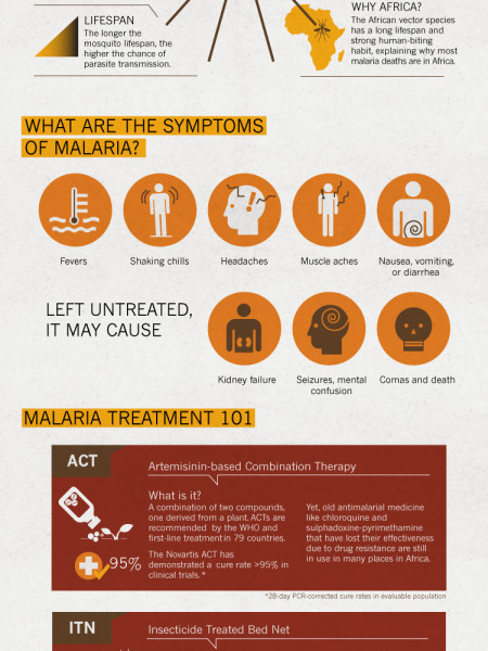 What is Malaria? Infographic