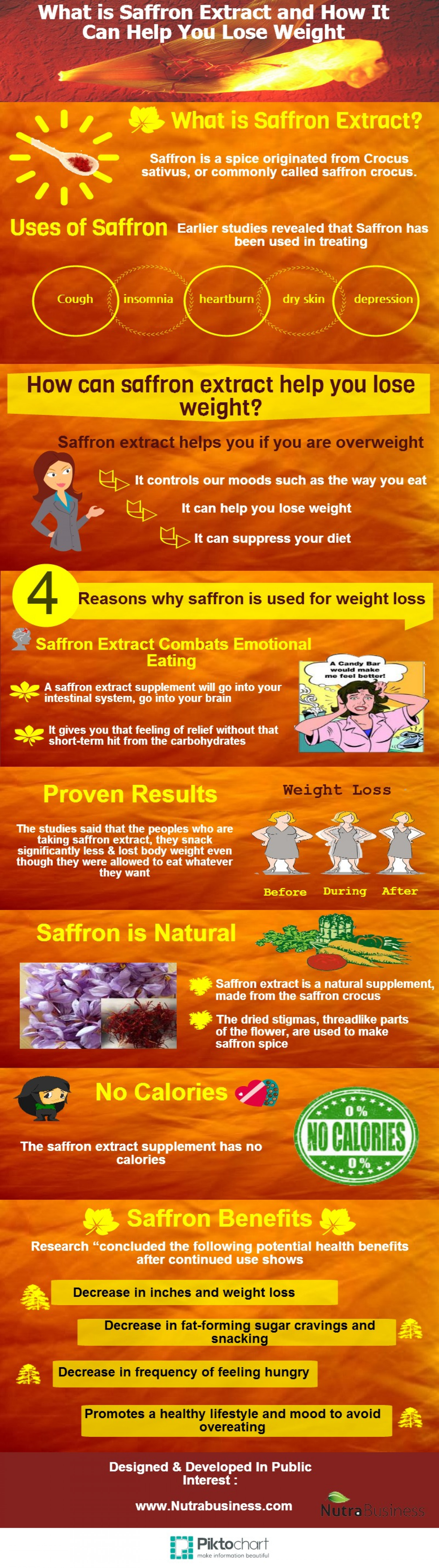 What is saffron extract & how it can help you t loss the weight Infographic