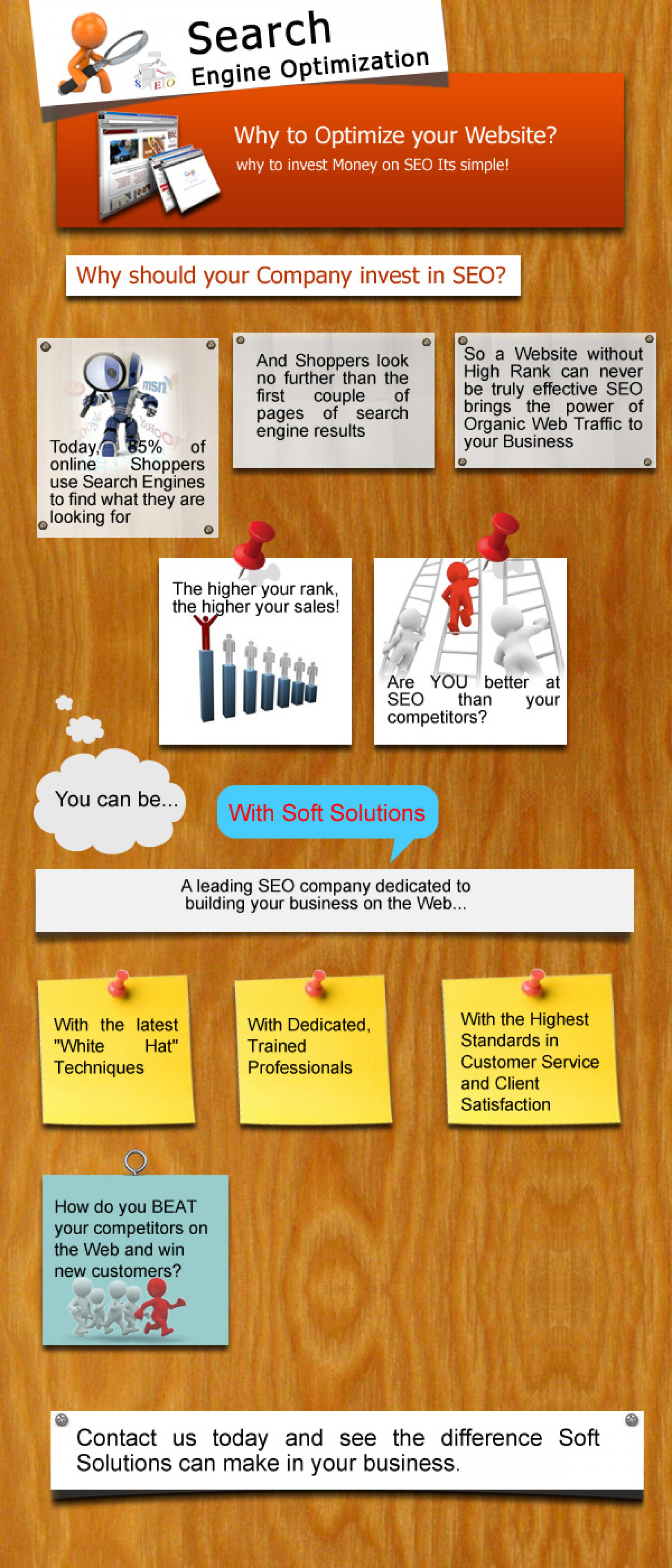 Softsolutions Infographic