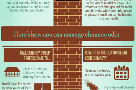 What is that odor coming from my Chimney Infographic