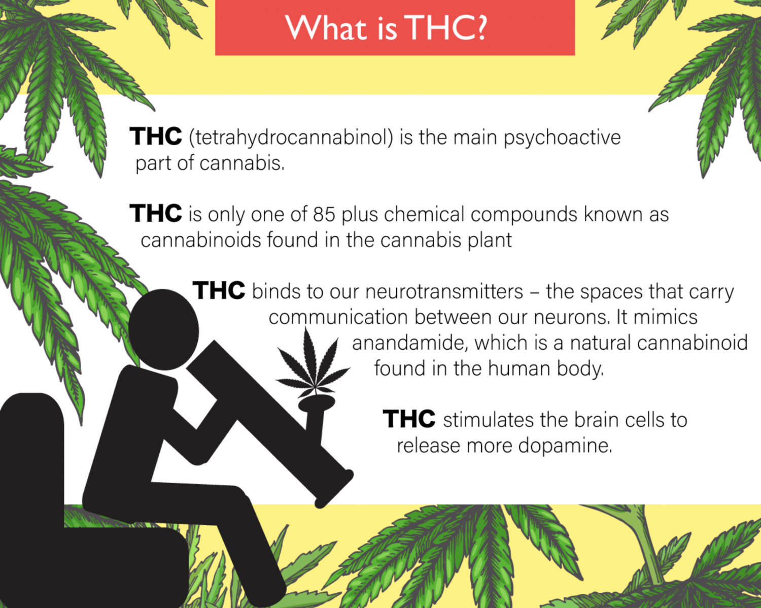 What is THC Infographic