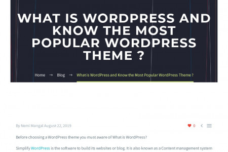 What is WordPress and Know the Most Popular WordPress Theme ? Infographic