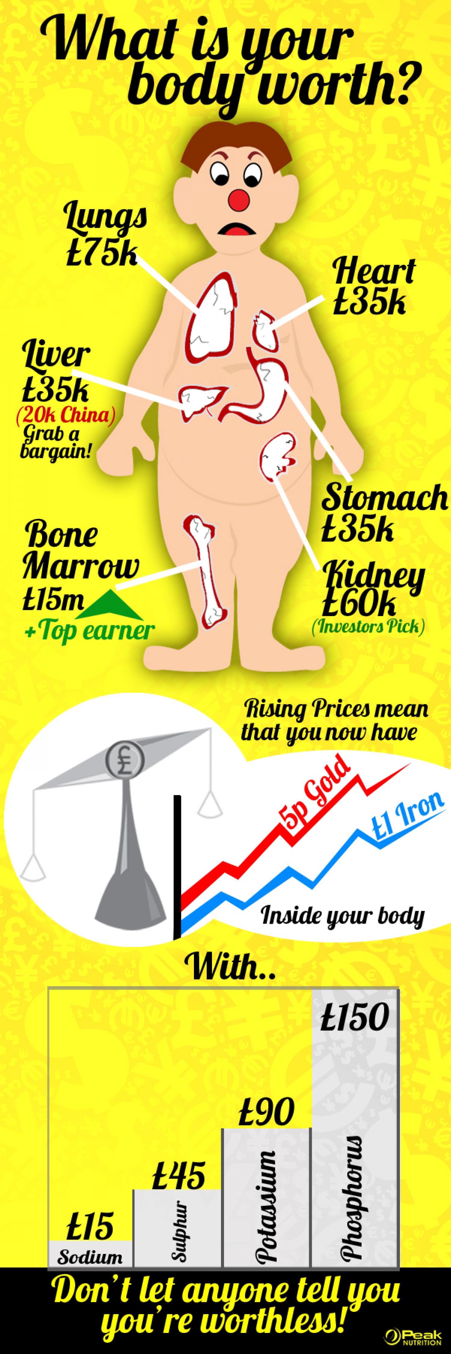 What is Your Body Worth? Infographic