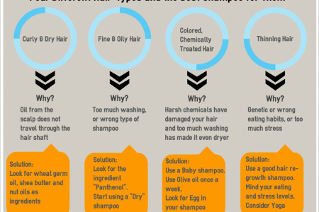 Four Different Hair-Types And The Best Shampoo For Them Infographic