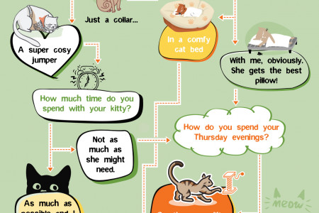 What Kind of Cat Parent Are You? Infographic