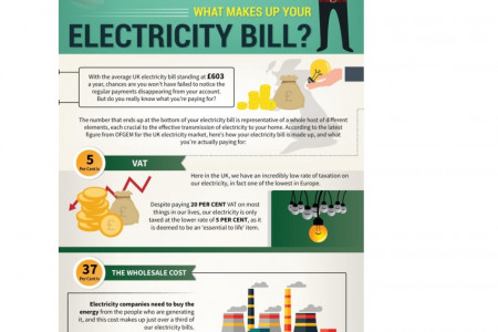 What Makes Up Your Electricity Bill Infographic