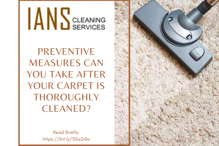 What Preventive Measures Can You Take After your Carpet is Thoroughly Cleaned? Infographic