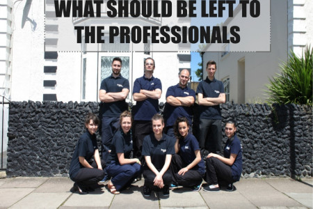 What Should Be Left to the Professionals Infographic