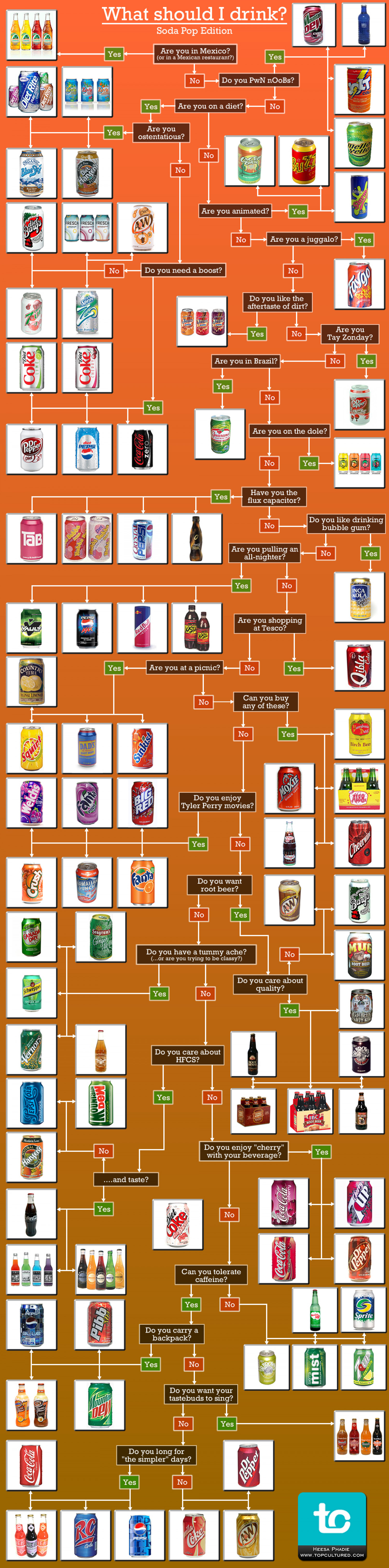 What Should I Drink? Infographic