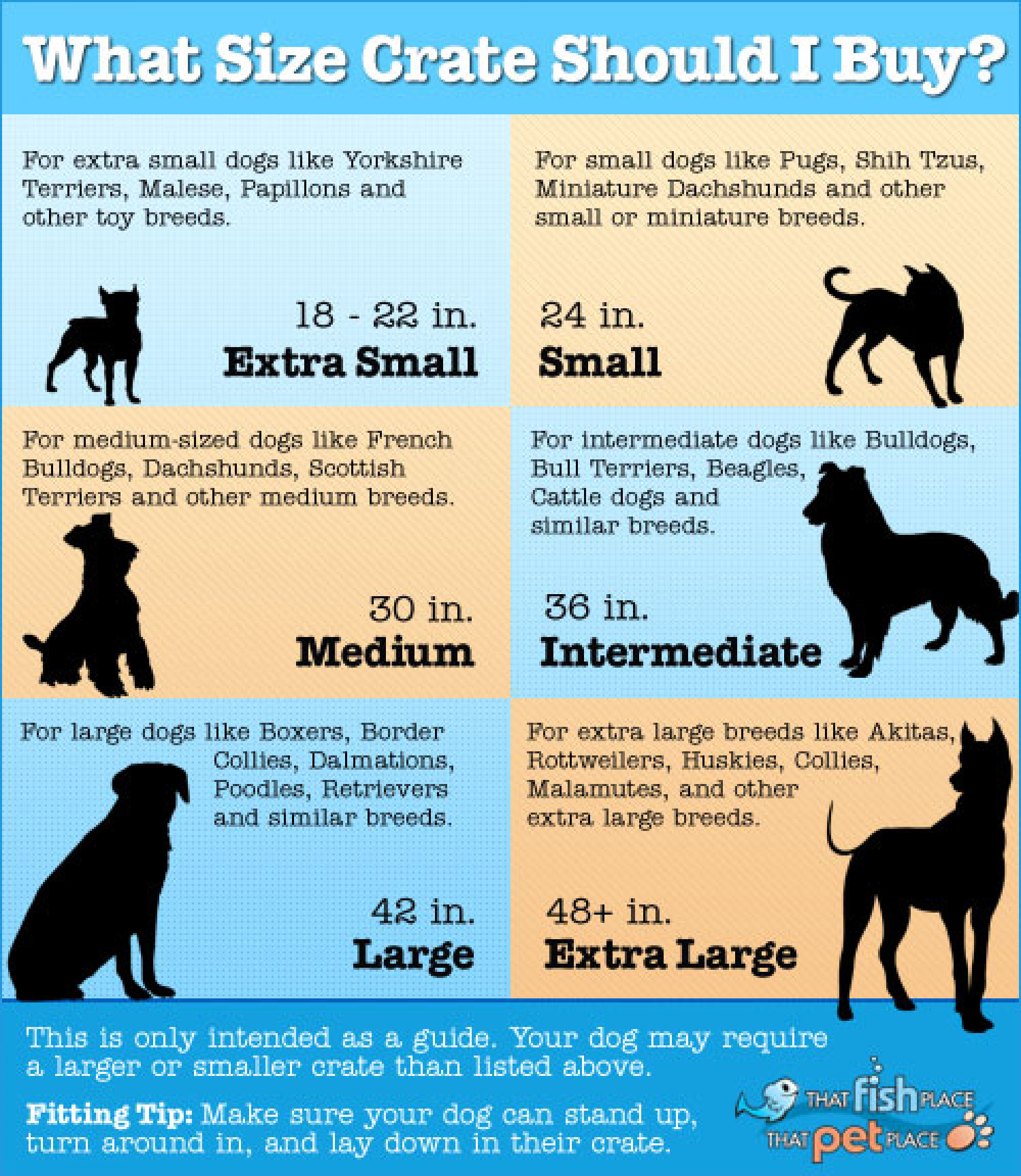 What Size Dog Crate to Buy Infographic