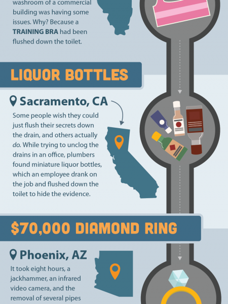 What The Flush? The Weirdest Things Ever Flushed Down The Toilet Infographic