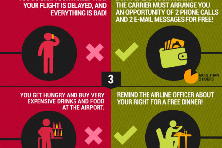 What To Do If Your Flight Is Delayed? Infographic