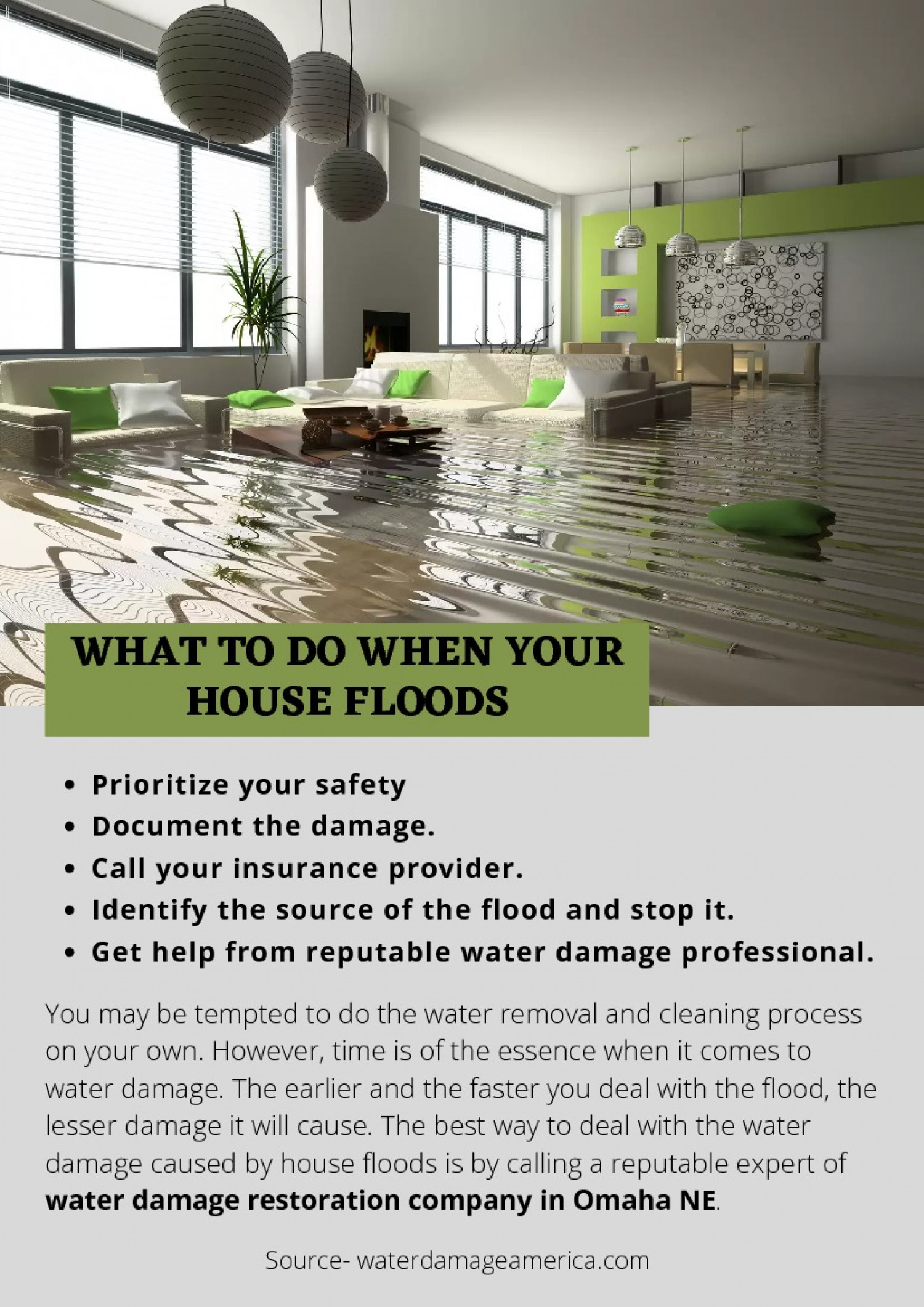 WHAT TO DO WHEN YOUR HOUSE FLOODS Infographic