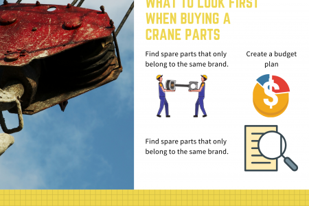What To Look First When Buying A Crane Parts Infographic