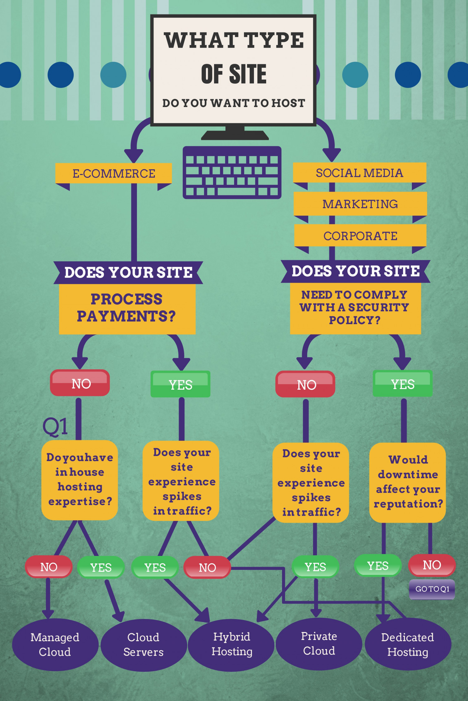 What Type of Site do You Want to Host?  Infographic