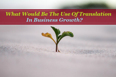 What Would Be The Use Of Translation In Business Growth? Infographic