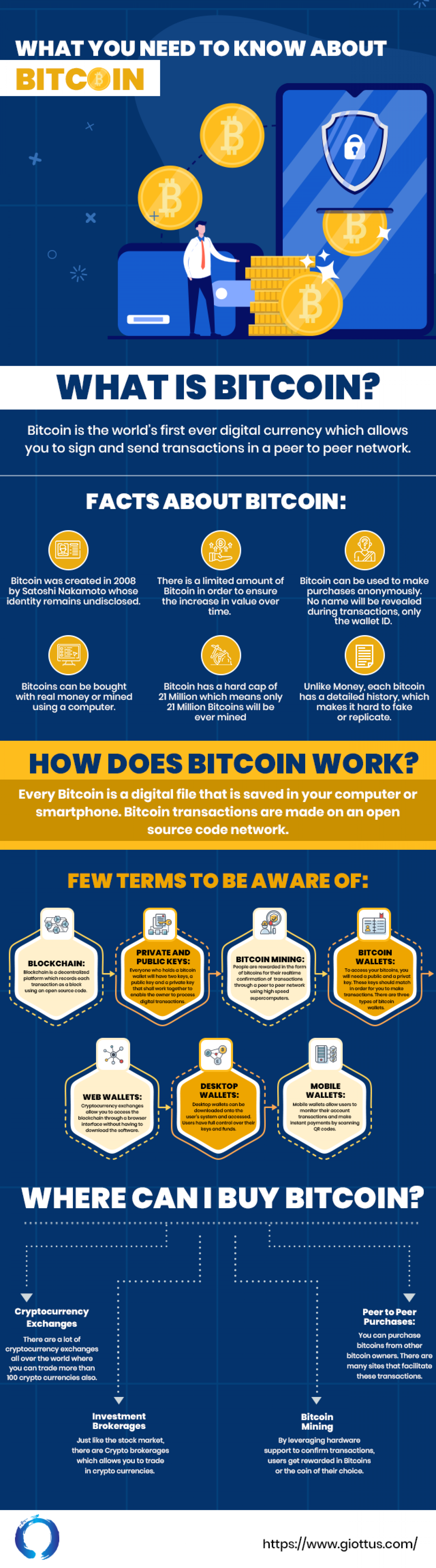 What you Need to know about Bitcoin  Infographic