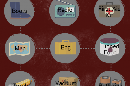What You'll Need in an Apocalypse  Infographic
