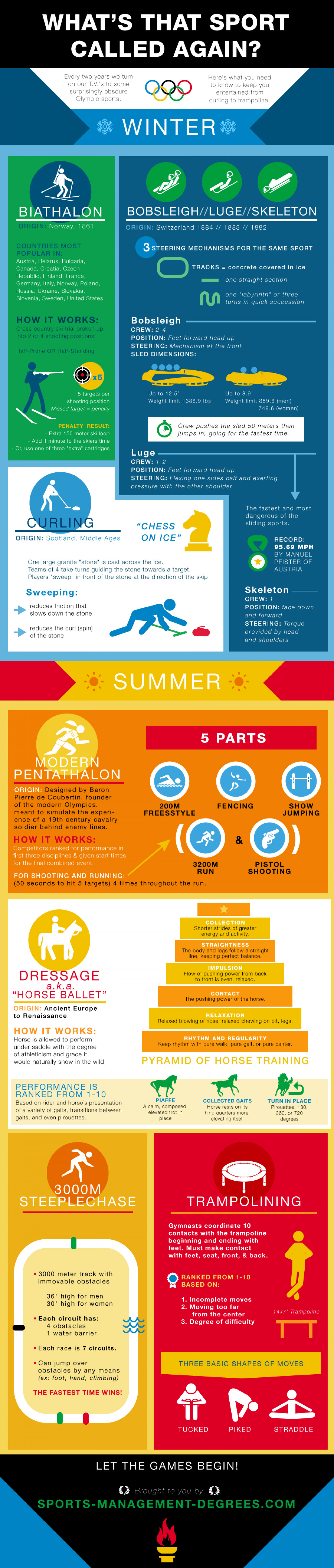 What's That Sport Called Again? Infographic