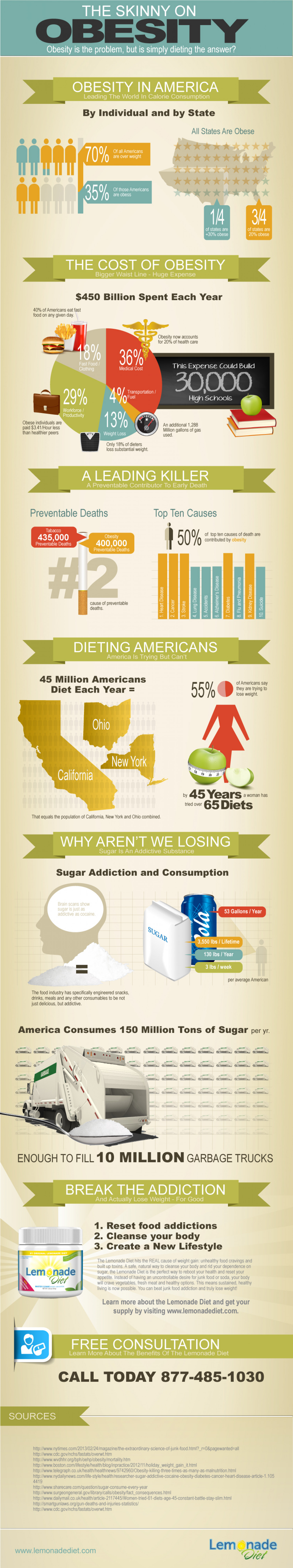 What's the Solution to Obesity? Hint: It's Not JUST Dieting Infographic
