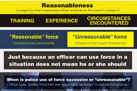 When Is It Acceptable For Police To Use Force? Infographic
