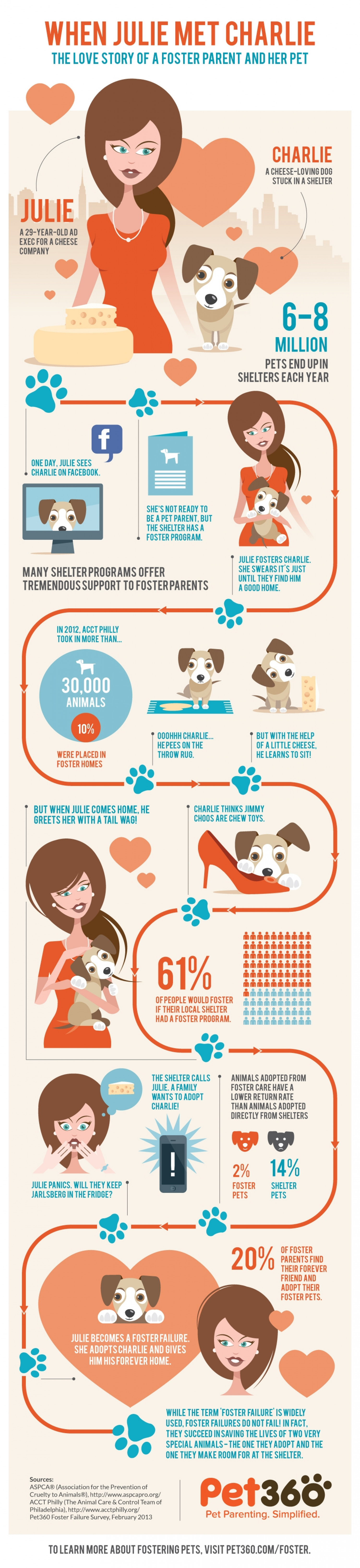 When Julie Met Charlie: The Love Story of a Foster Parent and Her Pet Infographic