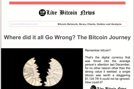 Where did it all Go Wrong? The Bitcoin Journey Infographic