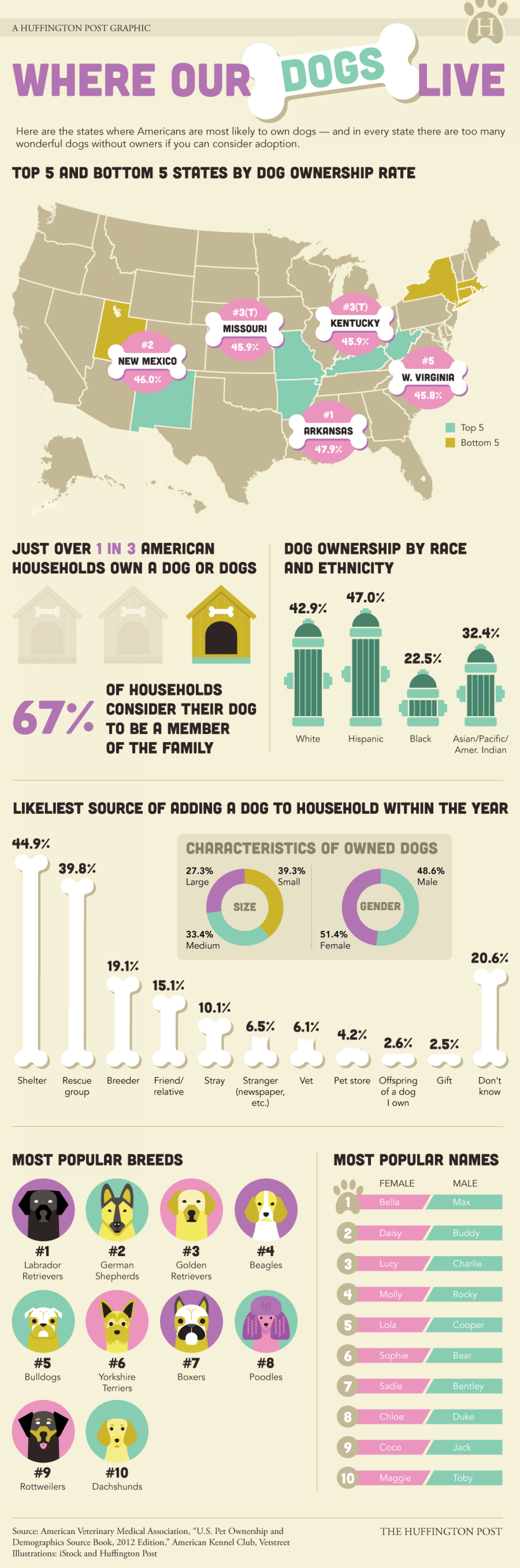 Where Our Dogs Live Infographic