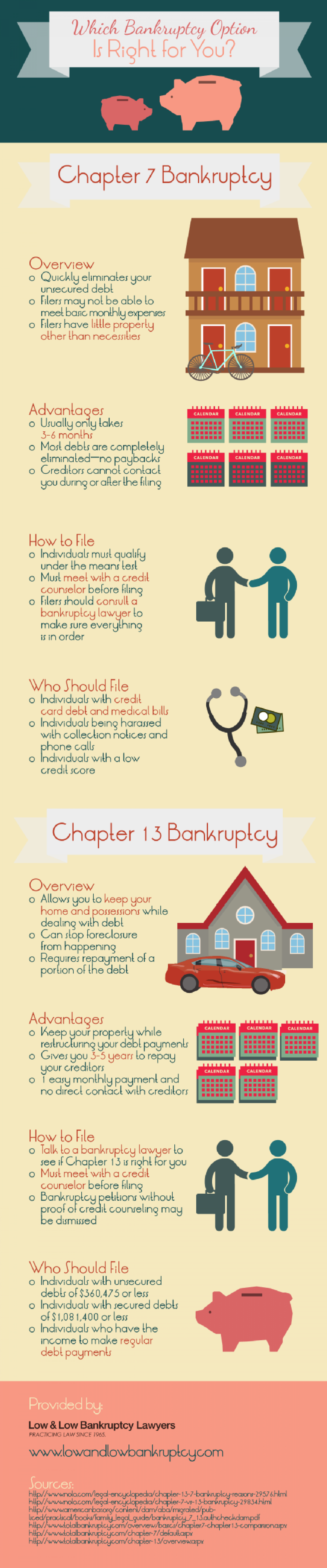 Which Bankruptcy Option Is Right for You? Infographic