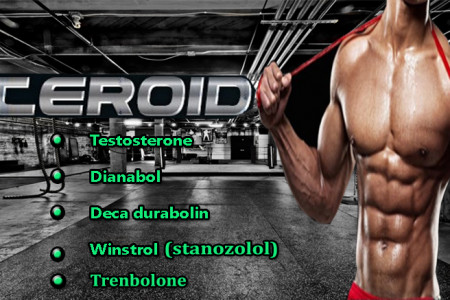 WHICH IS THE BEST STEROIDS FOR BULKING Infographic