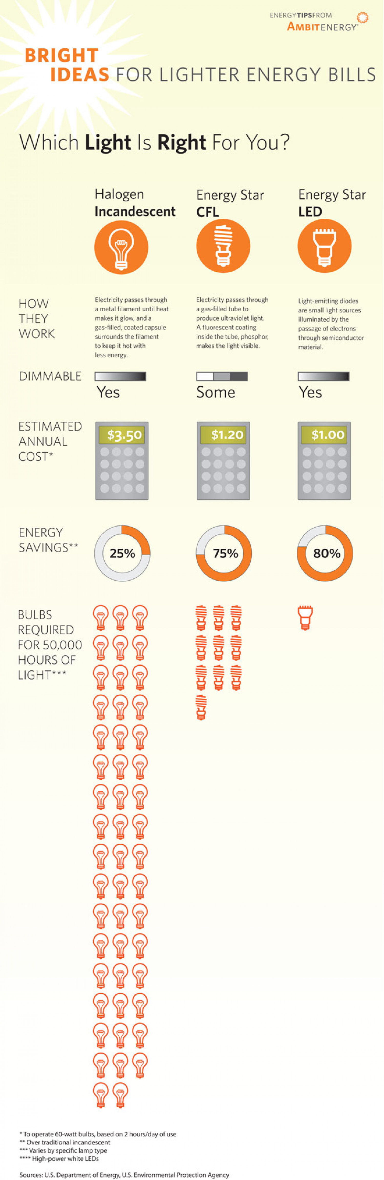 Which Light is Right for You Infographic
