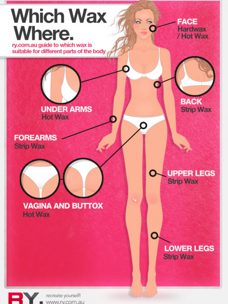 Which Wax Where. Infographic