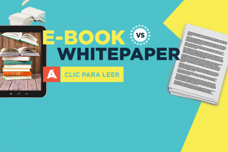 White Paper VS Ebook Infographic