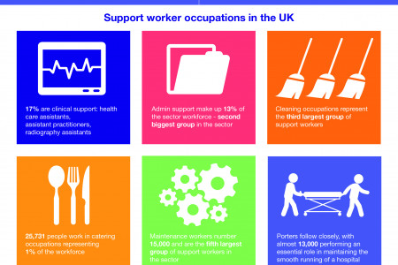 Who are the support health workforce?  Infographic
