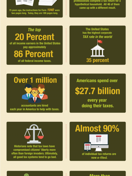 Who Loves Taxes? Infographic
