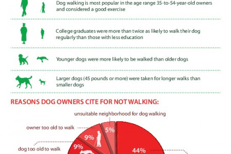 Who walks the dog Infographic